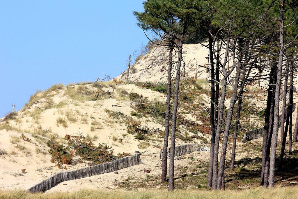 dunes en vendée