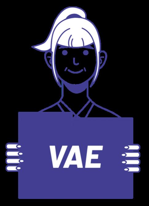 VAE Transitions Pro PDL
